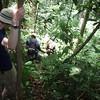 trekking through the jungle with a machete