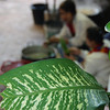 "A picture of a leaf with Laos vendors in the background preparing vegetables - Luang Prabang, Laos.  Travel photo from Luang Prabang, Laos. <a href=""http://nomadicsamuel.com"">http://nomadicsamuel.com</a>"