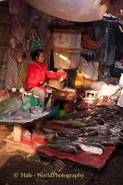 Back Alley Fish Vendor
