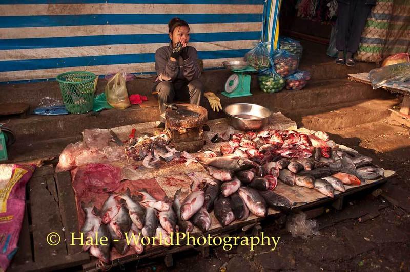 A Fish Vendor
