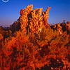 Tufa stacks at sunrise. <br /> Mono Lake