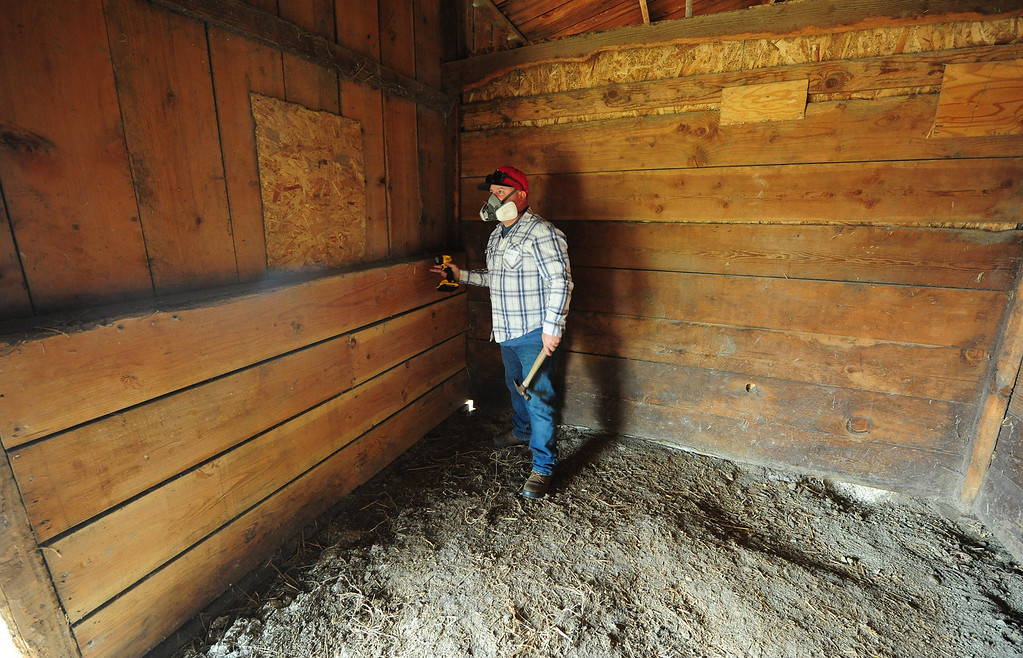 . VALLEJO, CA- OCT. 11, Damian Ostertag with R Ranch looks for nails as he helps repair the stables at the large animal evacuation center in Vallejo at the Solano County Fairgrounds on Wednesday. (Chris Riley/Vallejo Times-Herald)