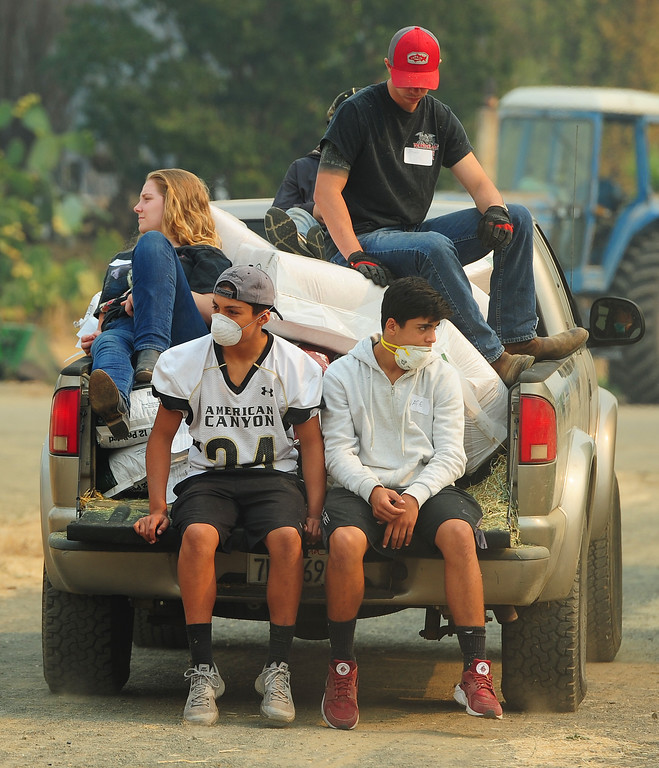 . VALLEJO, CA- OCT. 11, Volunteers ride in the back of a truck as the deliver supplies around the large animal evacuation center in Vallejo at the Solano County Fairgrounds on Wednesday. (Chris Riley/Vallejo Times-Herald)