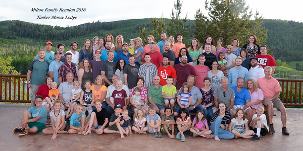 Large groups March 2017