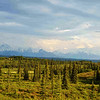 What most people see in Denali