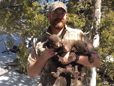 Josh Pollock with bear cubs