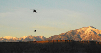 The helicopter brings a captured bison to the handling area on the Henry Mountains.  Photo taken 1-10-09 by Ron Stewart, Utah Division of Wildlife Resources.