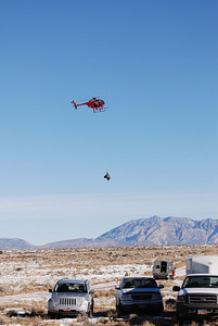 The helicopter brings a captured bison to the handling area on the Henry Mountains.  Photo taken 1-10-09 by Bill Bates, Utah Division of Wildlife Resources.