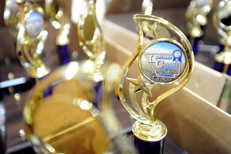 Larimer County Fair and Rodeo trophies wait to be awarded Wednesday, August 2, 2017 at Larimer County Fair in Loveland. (Michelle Risinger/ Loveland Reporter-Herald)