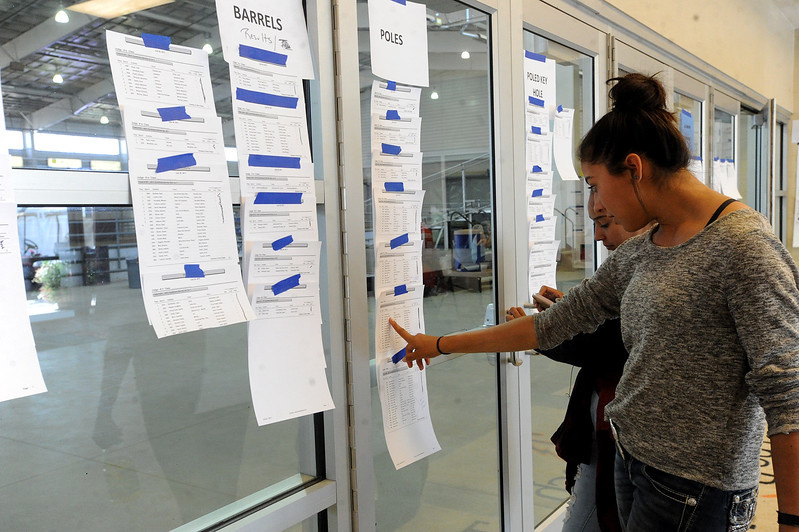Estela Price-Foster, 13, reviews the results Wednesday, August 2, 2017, for the horse competitions at the Larimer County Fair. She placed second in level-one English, first in level-one Western, and second overall. (Michelle Risinger/ Loveland Reporter-Herald)