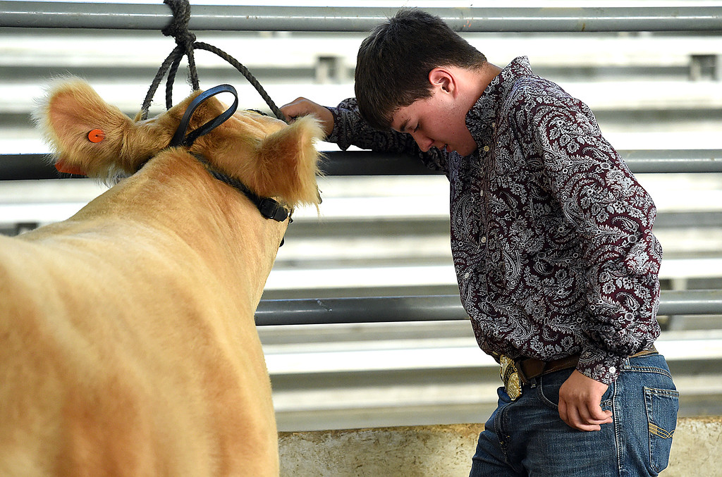 . T.J. Rice, 14, tries to hold back emotion as he says goodbye to his Reserve Champion market beef steer, Midas 2, after he sold Wednesday, Aug. 8, 2018, during the Fair Sale at the Larimer County Fair at The Ranch in Loveland.  (Photo by Jenny Sparks/Loveland Reporter-Herald)