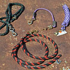 Various halter clips on lead ropes