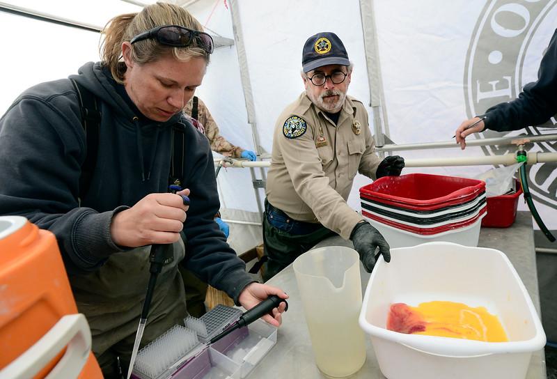 Colorado Parks and Wildlife Area Wildlife Manager