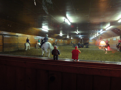 """After arriving at Knollwood, they visit the arena lounge to watch what it is all about. """"Hey Larry, those horses look really big."""""""