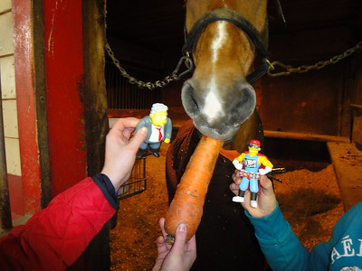 Larry and Duff get to meet their horse, Merlin. Larry thinks it's a good idea to bribe Merlin a little before the ride. They can give him the apples after they're safely back in the barn, saving the best for last!