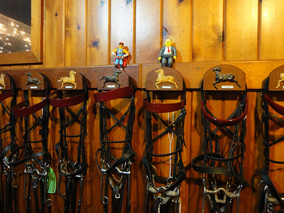 A visit to the tack room to pick out a bridle.
