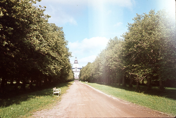 August 1966.  To the church, robule row of trees.  Slide 66-1495.