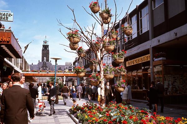 August 1966. Flowers in Rotterdam. Slide 66-1492.