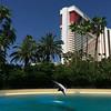 Siegfried & Roy's Secret Garden & Dolphin Habitat - Mirage - Las Vegas