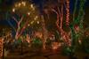 Another Las Vegas Christmas