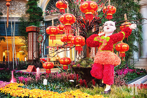 chineze-new-year-bellagio-gardens-14-ill