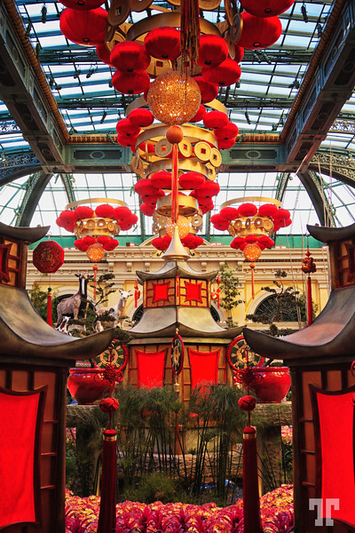 Chinese New Year Las Vegas at the Conservatory & Botanical Gardens at Bellagio<br /> #ChineseNewYearLasVegas
