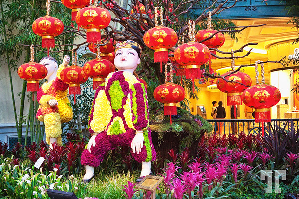 Chinese New Year Las Vegas at the Conservatory & Botanical Gardens at Bellagio #ChineseNewYearLasVegas