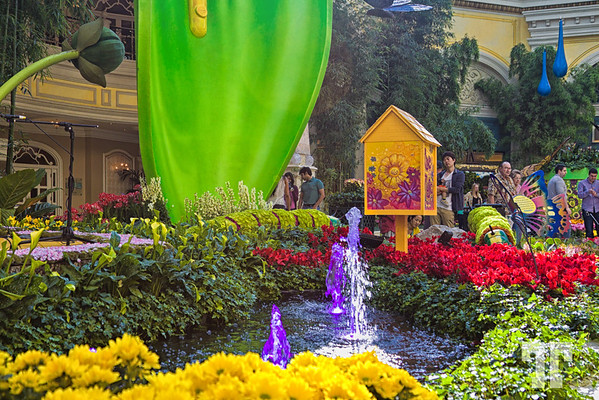 Spring Garden At Bellagio Conservatory Hotel, Las Vegas In 2014  Http://vegasgreatattractions