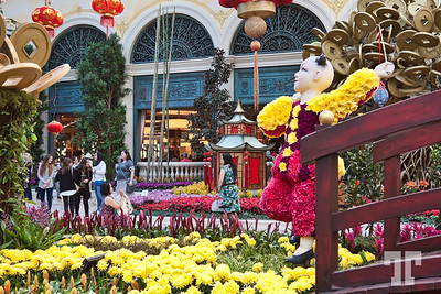 Chinese New Year of the Monkey 2016 celebration at Bellagio Gardens and Conservatory, Las Vegas #ChineseNewYearLasVegas #BellagioLasVegas