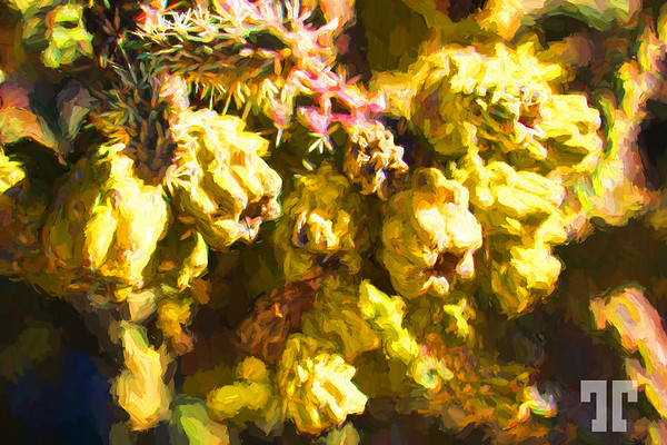 cactus-buds-chloride-PaintingHappy