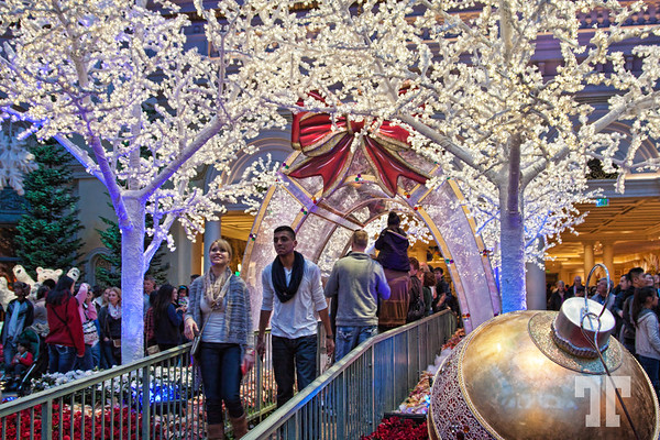 Passageway with falling snow at the entrance to the Bellagio winter gardens