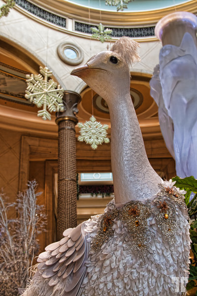 Winter holiday decorations at Palazzo (aa)