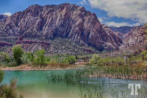 Harriot Lake at Red Rock Canyon, around Las Vegas