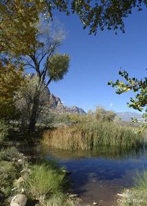 Spring Mountain Ranch - the spring