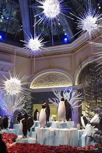 Bellagio Conservatory - Theme for Christmas 2005