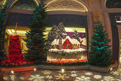Bellagio Conservatory - Theme for Christmas 2012
