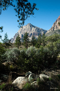 La Madre Springs Trail, Red Rock Canyon