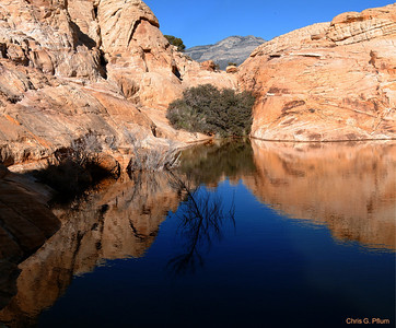 Calico Tanks, Red Rock Canyon , Las Vegas, Nevada - Tinajas or tanks are natural stone basins that hold runoff from the scarce desert rains.