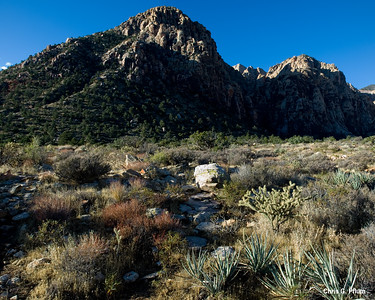 Ice Box Canyon, Red Rock Canyon , Las Vegas, Nevada