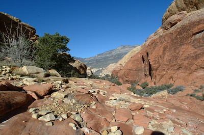 Calico Tanks Trail, Red Rock Canyon , Las Vegas, Nevada