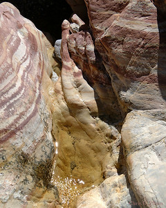 La Madre Springs, Red Rock Canyon , Las Vegas, Nevada