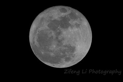 Moon from backyard