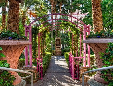 flamingo-wedding-venue