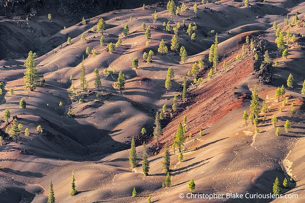 Painted Dunes - Sunrise