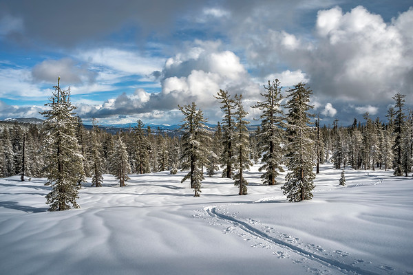 Ski Tracks in Lassen Volcanic National Park, CA