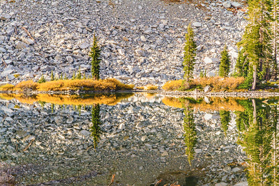 Cliff Lake Mirror