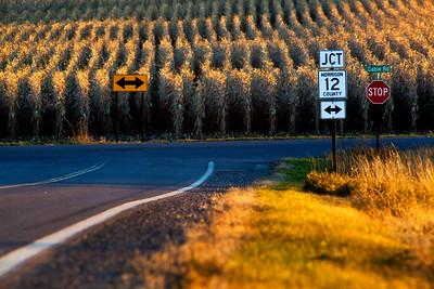 JCT Morrison County 12 MN_8950