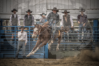 Last Hurrah Roughstock Rodeo 2018