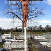 Broussard Cemetery, New Iberia, La 012817 003