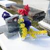 St Rose of Lima Cemetery, Cecilia, Louisiana 120216 022 Batiste